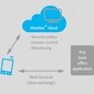 Using bluebee® for commissioning support